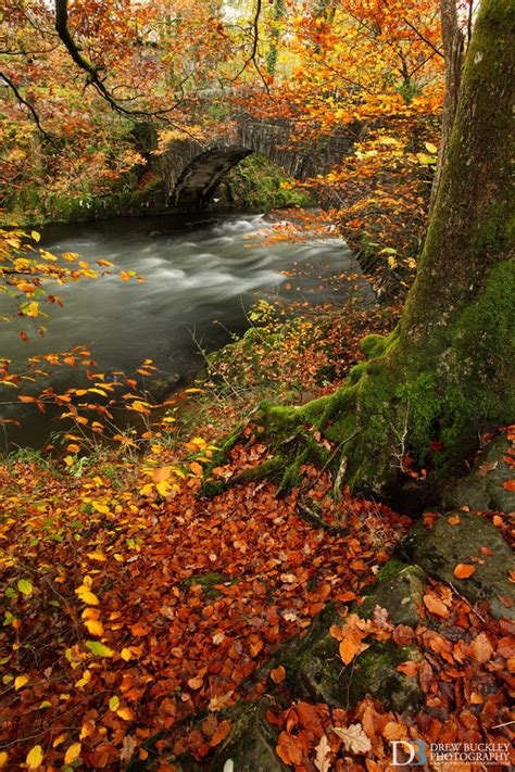 Lake District in Autumn ~ Landscapes & Red Squirrels
